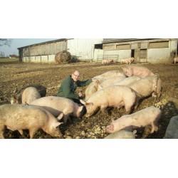 Pâté en croute Bio aux trompettes et au mac-vin du Jura (Portions de 100gr)